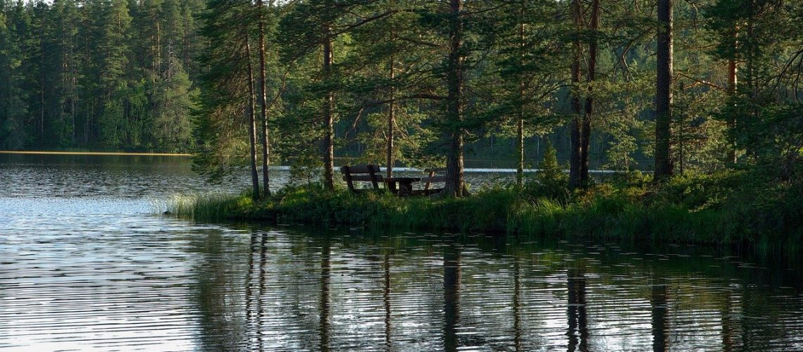 finland, lake, fir-907408.jpg
